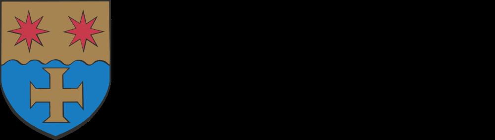 logo-header nei